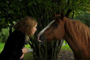 Els Basten paard