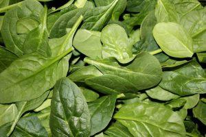 spinazie bladeren