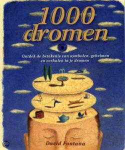 1000-dromen-fontana