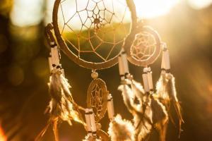 dromenvanger met veren in zonlicht