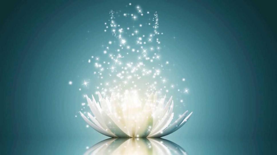 levensenergie stroomt boven bloem