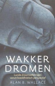 voorkant van het boek Wakker dromen van Allan Wallace