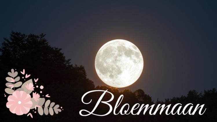 volle maan met bloemen en de tekst: bloemmaan
