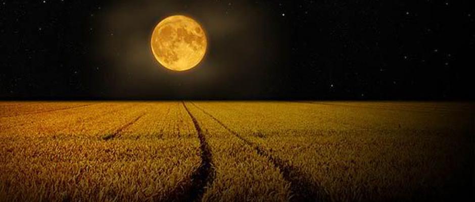 oogstmaan volle maan