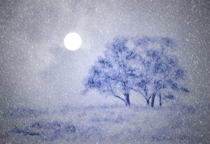 sneeuwmaan