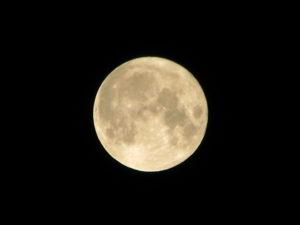 volle-maan-helder