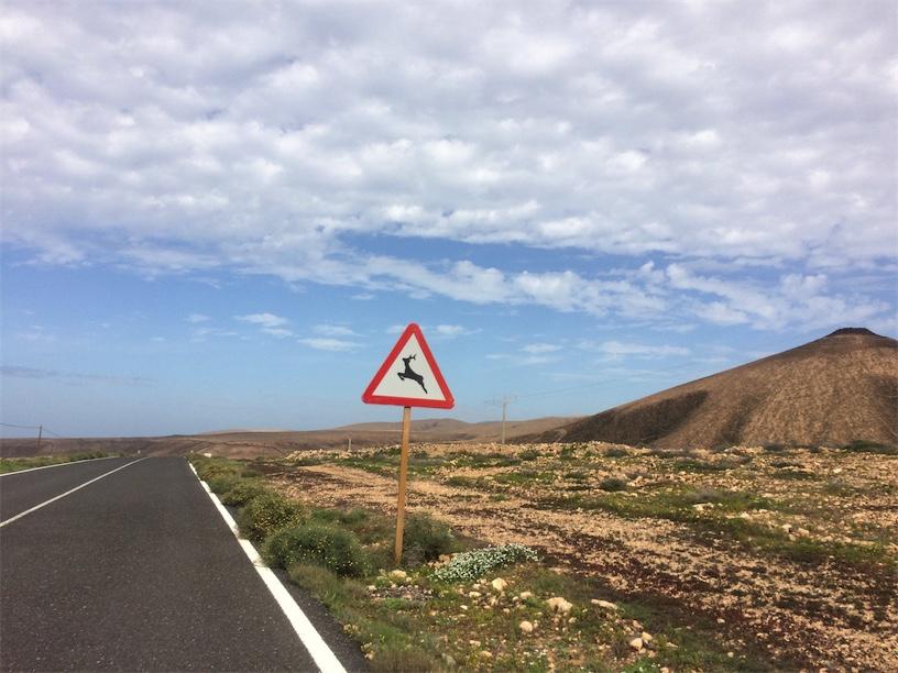 geitenbord Fuerteventura