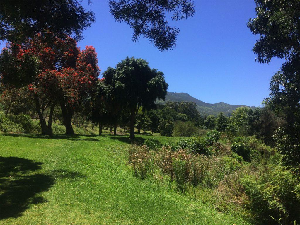 park in George met natuur