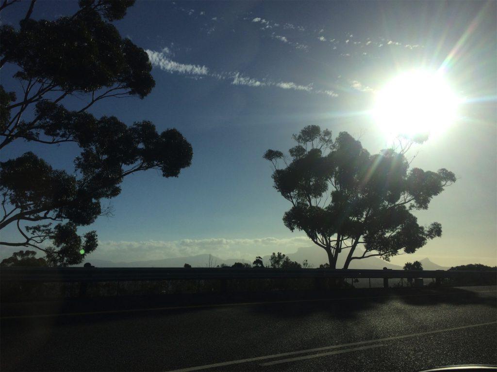zon en bomen in Zuid-Afrika langs de weg