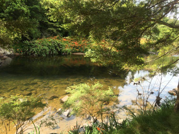 waitawheta rivier