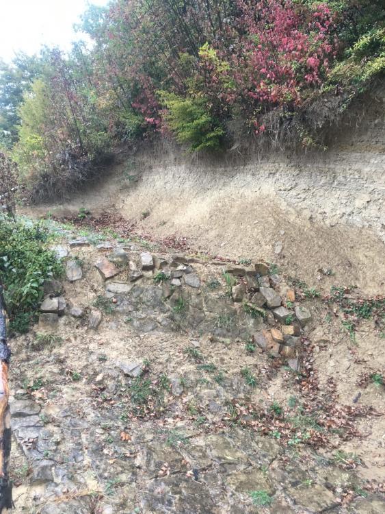 hladovina debela kod dzevde stenen en struiken